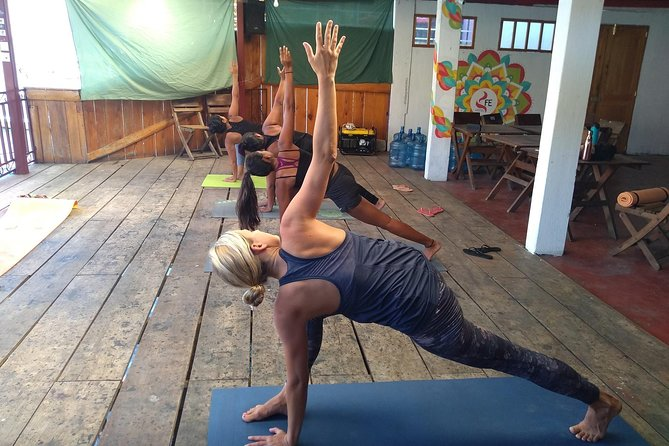 All-Levels Power Vinyasa Yoga Class