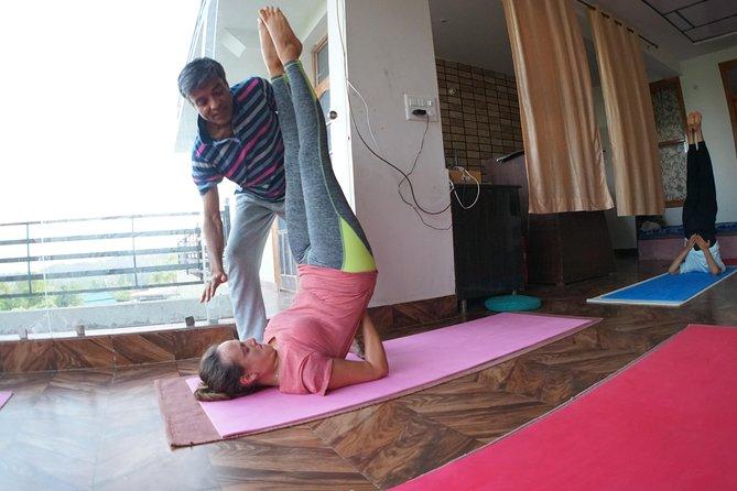 Yoga Meditation Detox lifestyle holidays in Himalaya