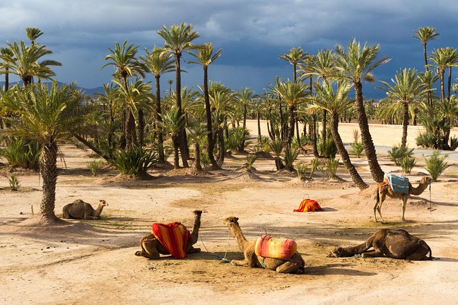 The Grand Tour Of Morocco