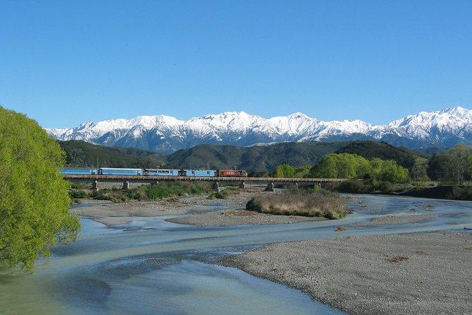 Tranz Alpine Train Tour