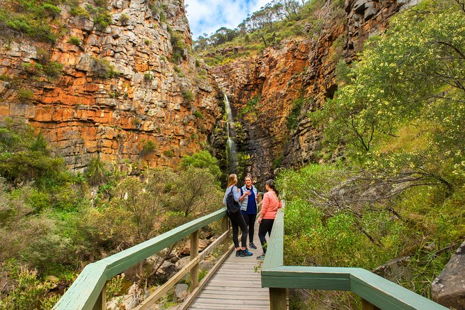 Small Group Bush Walk & BBQ with Wine Day Trip from Adelaide photo 6