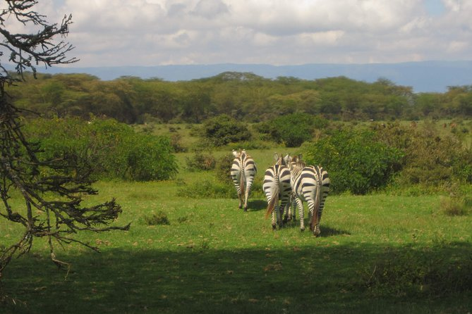 Lake Nakuru National Park Excursion