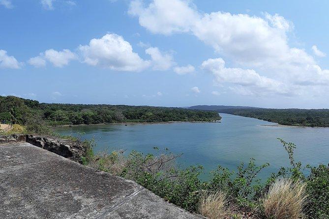 Discover San Lorenzo and the Exuberant Caribbean Rainforest.
