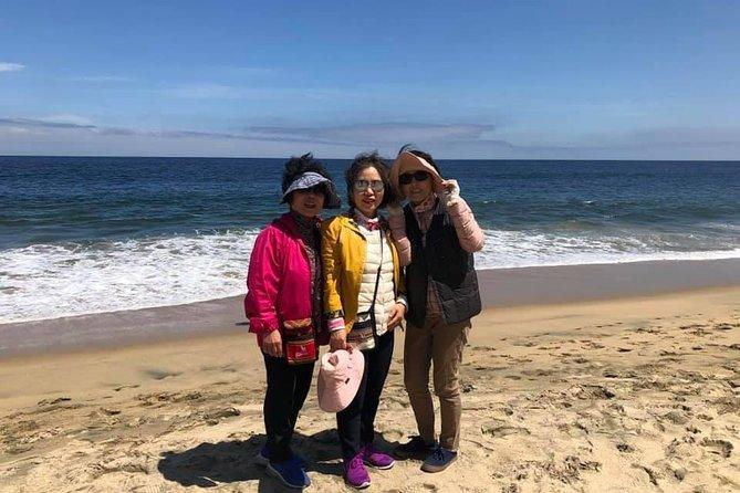 Small Group tour to Viña Del Mar, Valparaiso from San Antonio port