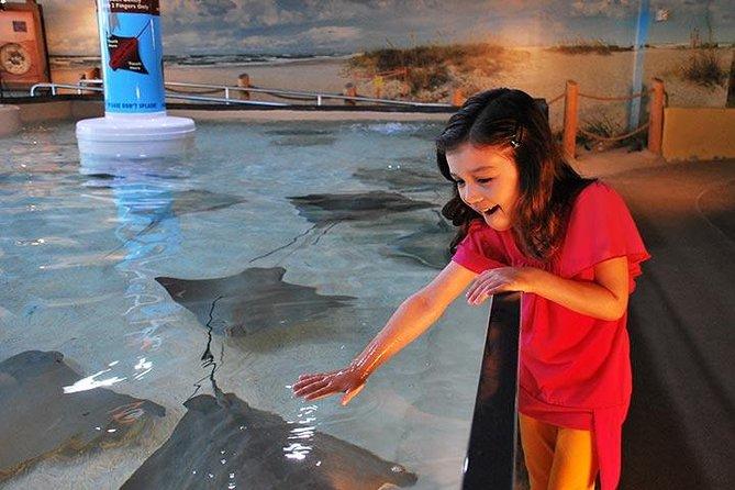 https://media.tacdn.com/media/attractions-splice-spp-674x446/07/7b/f9/54.jpg