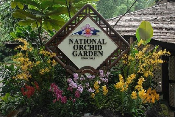 Private Half Day Singapore City Tour with Botanical Orchid Garden