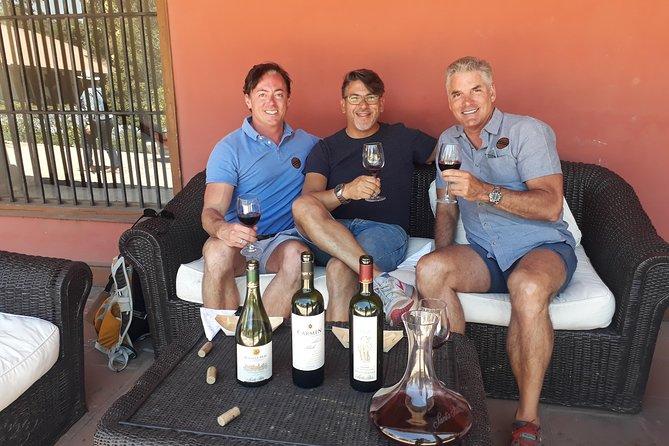 Maipo Wine Valley