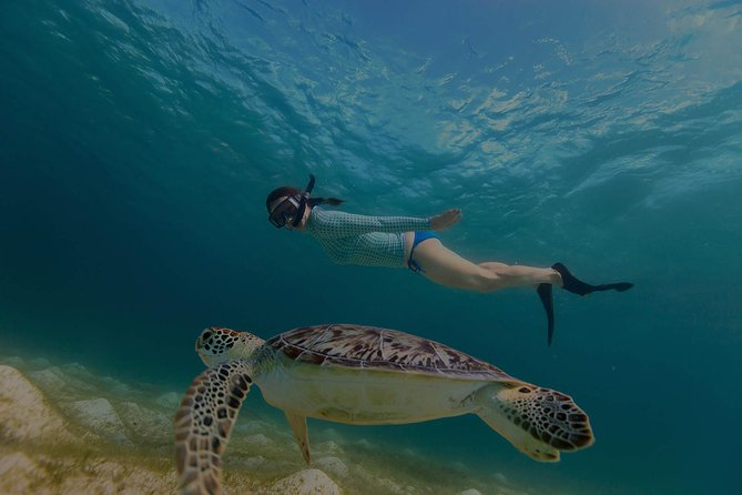 Full Day, All-Inclusive, Sailing & Snorkel Excursion