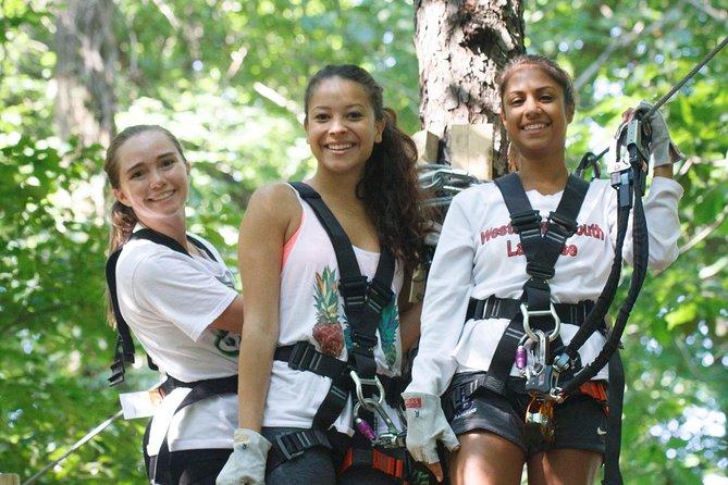 Adventure Park Climbing Experience