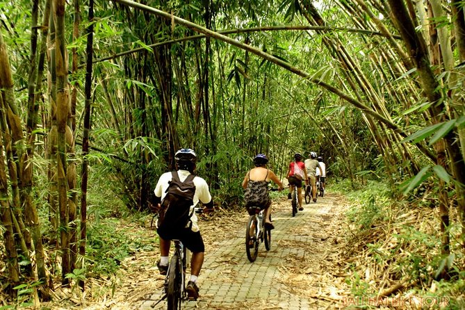 Bali Downhill Cycling and White Water Rafting photo 3