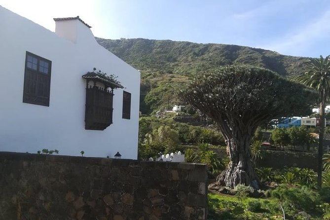 Tenerife Highlights Full-Day Tour photo 7