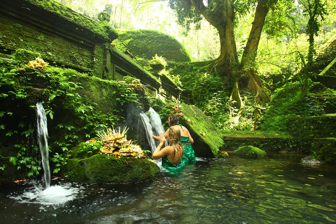 Holybathing ritual, rice terrace and ubud jungle flying fox day trip