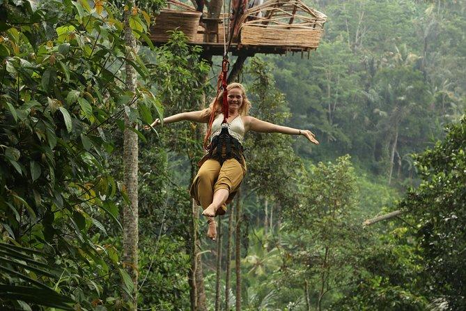Holybathing ritual, rice terrace and ubud jungle flying fox day trip