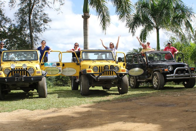Just Safari Private Jeep Tours, 4x4, Experiência Open Top