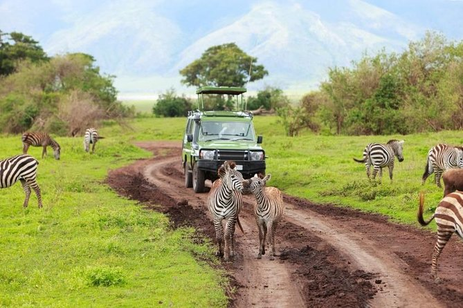 7 Days Northern Circuit Safari