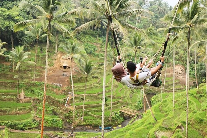 Best of Ubud Tour with Jungle Swing, Rice terrace, Temple and Waterfall