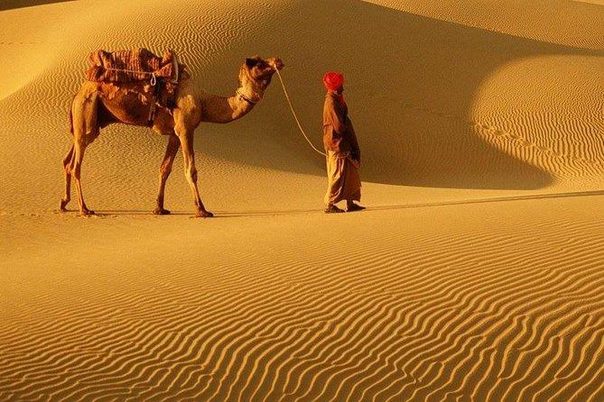 Jaisalmer City Tour (Pickup from Hotel)