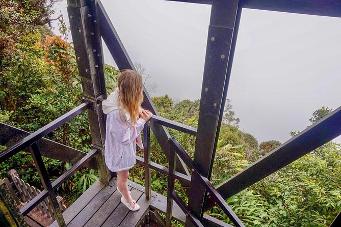 Experience Real Cameron Highland from Ipoh