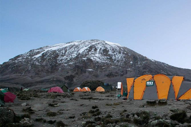 7 Days Lemosho Route - Climb Mount Kilimanjaro