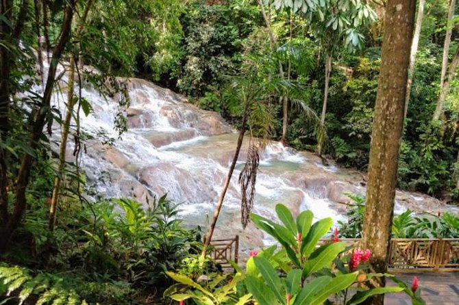 Dunns River Falls and Bob Marley Nine Mile Private Tour photo 8