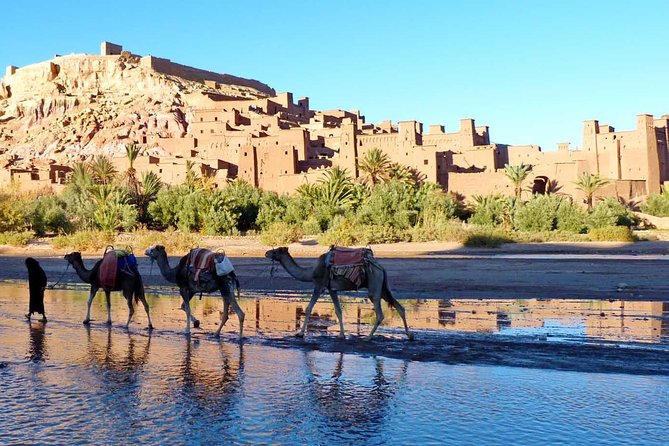 Amazing Desert Tours From Fes in 2 Days and 1 night