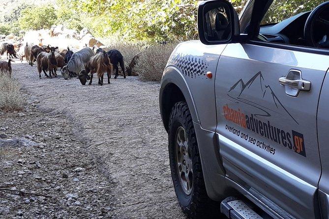 Luxury Jeep Safari - Private Tour