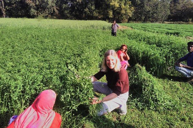 Tribal Village Tour- an authentic village visit