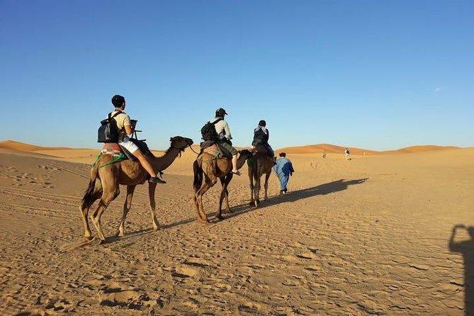 fes to fes 3 days desert tour