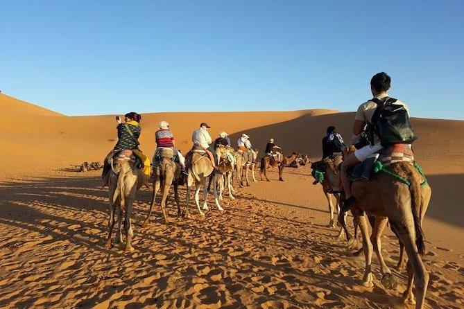 Fes to Fes 2 days desert tour