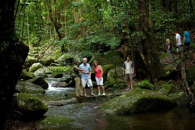 Daintree and Cape Tribulation Rainforest
