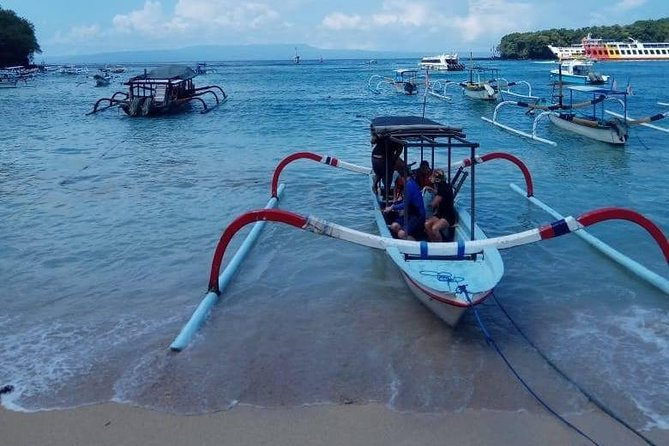 Bloo Lagoon Snorkeling East Bali With Transport and Lunch photo 12