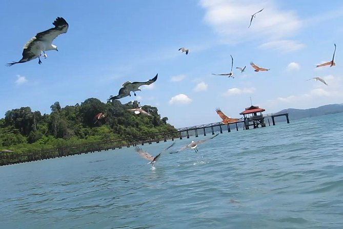 Amazing Fishing Experience in Langkawi (with Island Hoping & BBQ lunch) photo 7