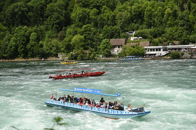 Private trip from Zurich to the Black Forest in Germany & Swiss Rhine Falls