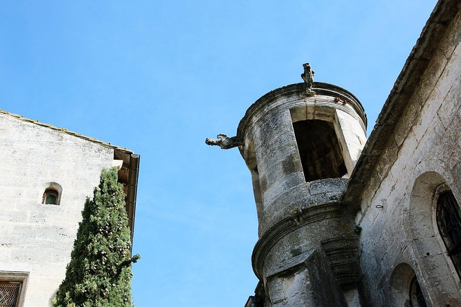 The Medieval villages of Les Baux de Provence & St Rémy de Provence private tour photo 11