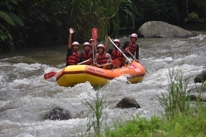 Ayung River White Water Rafting Tour