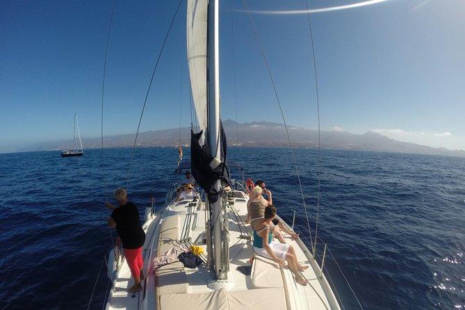 3-Hour Boat Trip from Costa Adeje in Tenerife