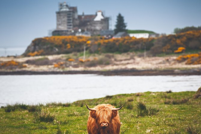 3-Day Isle of Mull and Iona Small-Group Tour from Glasgow photo 3