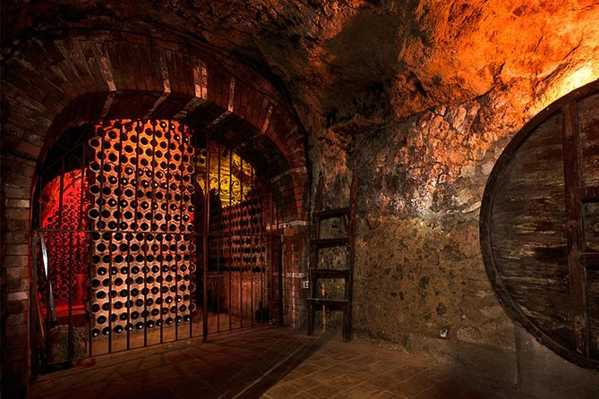 TASTE THE TREASURES from RIBERA DEL DUERO in a SUBTERRANEAN wine Cellar photo 6