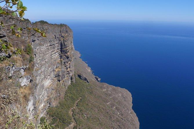 Splendours of Far West Coast private tour - beaches, cliffs, breathtaking views