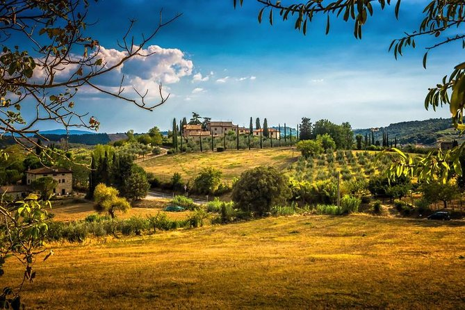 Carmignano Half Day tour from Florence: The First Cabernet-Sauvignon in Tuscany