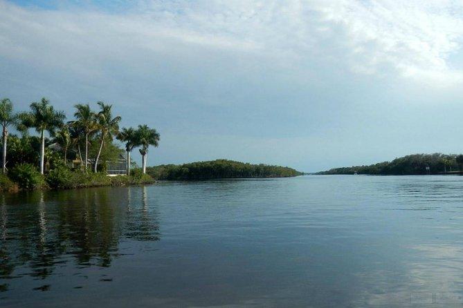 Manatee Sightseeing Eco-Tourism Tour Adventure, Naples, FL, ESTADOS UNIDOS