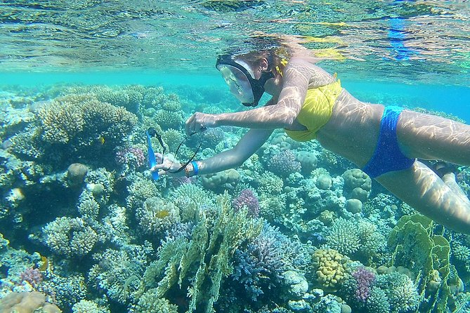 Orange Bay snorkeling Sea Trip 6 in 1 - Hurghada