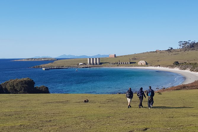 From Hobart: Maria Island National Park - Day Walk and Picnic Lunch