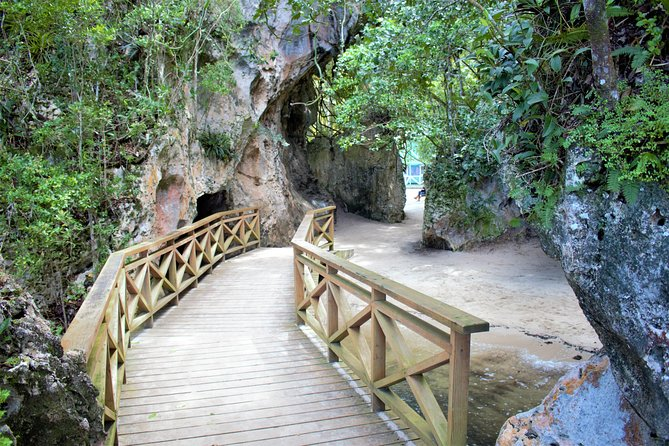 2 Caves in Los Haitises with Locals Expert Tour Guides ( Caño Hondo)