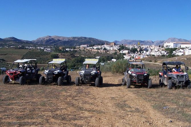 Surrounding Ronda Buggy Trip with Gorge Visit