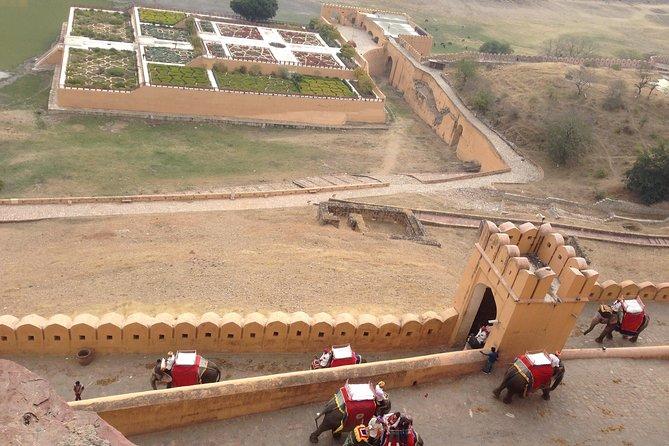 Private tour in Jaipur
