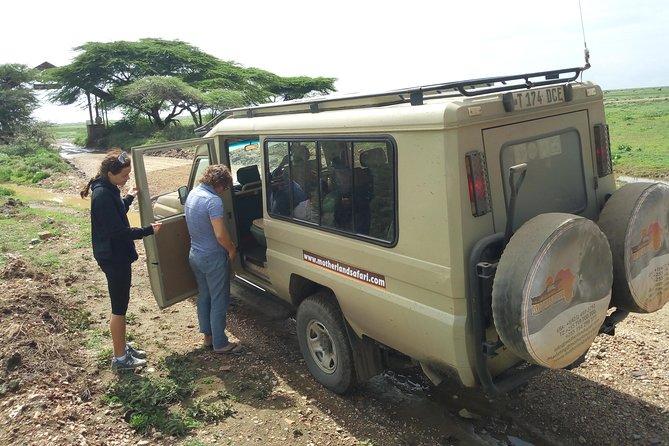 Serengeti-Ngorongoro Safari 7 Days 6 Nights