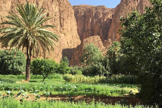 Day trip to the three valleys from Marrakech