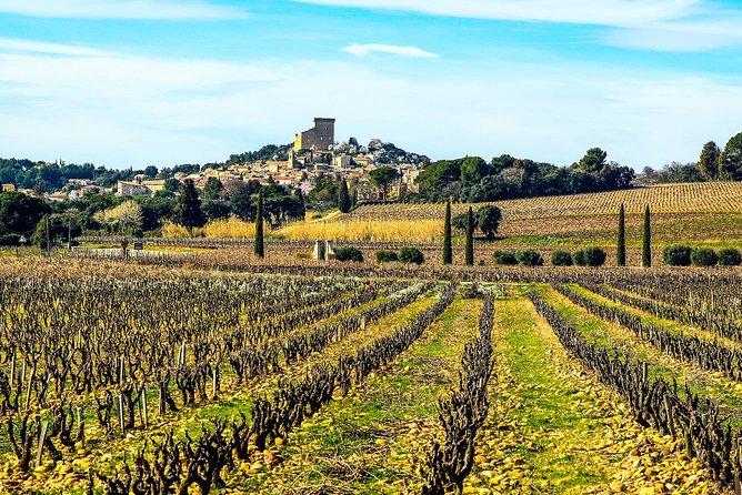 Wine tour of Châteauneuf du Pape, gastronomy, wines & joie de vivre private tour