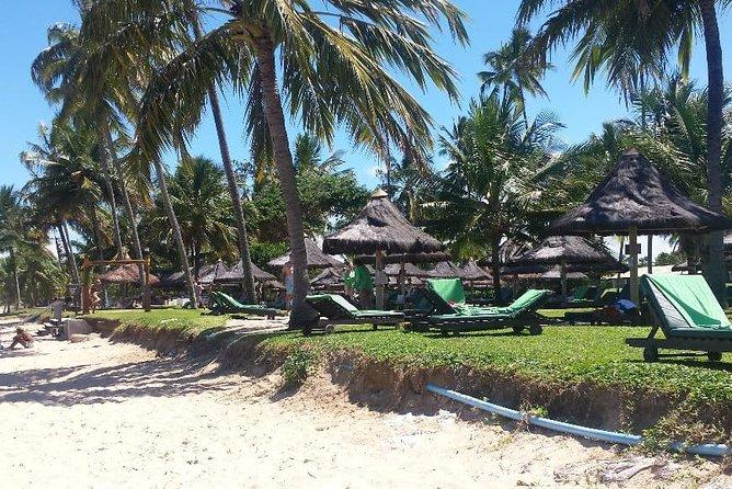 Full Day - Passeio Privativo - Litoral norte da Bahia - 4 Praias - Máximo 4 PAX
